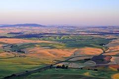 Panorama von Palouse, Washington State Stockfotografie