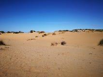 Panorama von Piscinas-Düne in Sardinien Lizenzfreie Stockfotografie