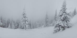 Panorama von starken Schneefällen auf den Berg Kalter nebeliger Wintertag Bäume abgedeckt im Schnee lizenzfreie stockfotografie