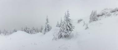 Panorama von starken Schneefällen auf den Berg Kalter Wintertag mit dichtem Nebel und Schnee stockfotos