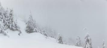Panorama von starken Schneefällen auf den Berg Kalter Wintertag mit dichtem Nebel und Schnee stockfotografie