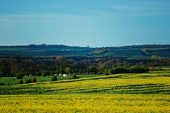 Panorama von Vezelay in Region des Burgunds Franche Comte von Frankreich Stockfotos