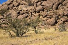 Panorama w Namibia Fotografia Stock