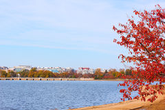 Panorama Washington DC near the Tidal Basin in autumn. Royalty Free Stock Photos