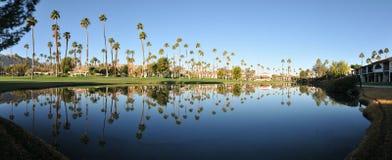 Panorama of water reflectig palm trees royalty free stock image