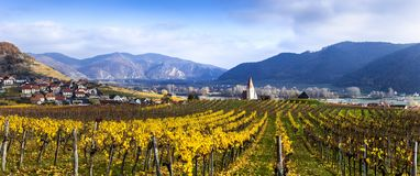 Panorama of Weissenkirchen. Wachau valley. Lower Austria. Autumn colored leaves and vineyards. Weissenkirchen. Wachau valley. Lower Austria. Autumn colored stock photo