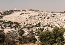 Panorama, welches die alte Stadt von Jerusalem, Israel, includin übersieht Lizenzfreie Stockfotografie