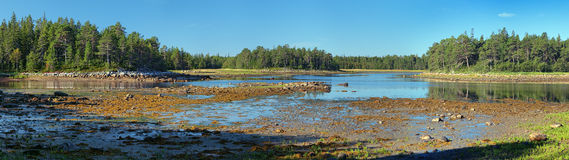 Panorama of White Sea coast during the low tide Stock Photos