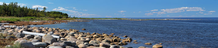Panorama of White Sea coast, Solovetsky Islands Stock Images