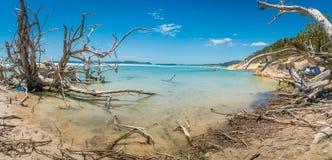 Panorama of whitehaven beach in the whitsundays, Australia royalty free stock image