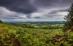 Panorama in Wicklow, Ireland. Fresh green bracken and agricultural land extending to the horizon in Wicklow, Ireland with black threatening cloud Royalty Free Stock Photo