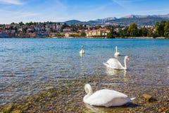 Panorama widok Lugano, góry i miasto Lugano jeziorni, Ticino kanton, Szwajcaria Sceniczny piękny Szwajcarski miasteczko z luksuse fotografia royalty free