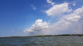 Panorama widok Namorzynowy Lasowy Bekasi zdjęcia royalty free