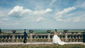 Panorama widok piękna zielona natura Rozochocona nowożeńcy para iść each inny blisko starego kamienia Zdjęcie Stock
