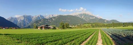 Panorama widok Steinerenes Meer Saalfelden Leogang Austria Obraz Royalty Free