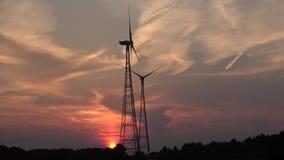 Panorama wieczór niebo Wieczór w drewnach Zmierzch rewolucjonistki niebo zdjęcie wideo