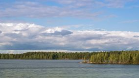 Panorama of wild forest lake, timelapse stock video