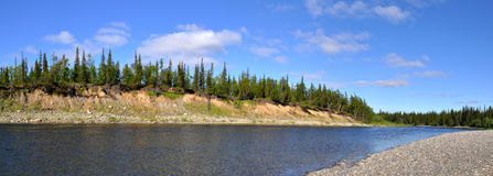 Panorama of the wild river. Royalty Free Stock Photos