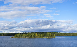 Panorama of wild summer lake Stock Image