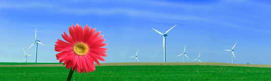 Panorama of wind turbines Royalty Free Stock Photos