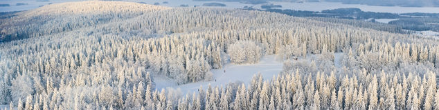 Panorama of winter Finland. Panoramic aerial view of winter forest with frosty trees and skiers. Kuopio, Finland Stock Image