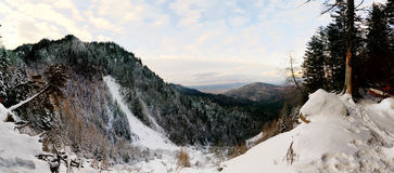 Panorama winter landscape Royalty Free Stock Images