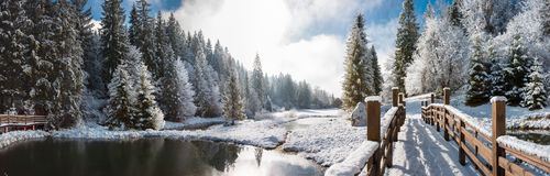 Panorama of a winter morning in the Carpathians Stock Photos