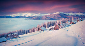Panorama of the winter morning in the mountains. Mountain valley Royalty Free Stock Photography