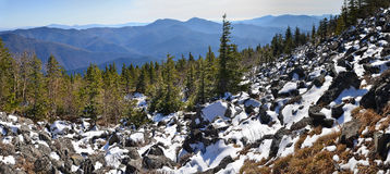 Panorama of winter mountains. Wild landscape, taiga, Primorye, Far East of Russia, taiga, snow, stones and pines stock photography