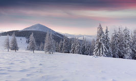Panorama of the winter mountains Royalty Free Stock Photos