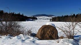 Panorama of winter mountains. Panorama of Ondrejnik mountain range near Frydlant nad Ostravici city during nice winter day Royalty Free Stock Photo