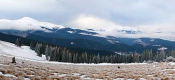 Panorama of winter mountains Royalty Free Stock Image