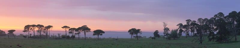 panorama wschód słońca Fotografia Royalty Free