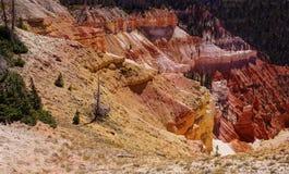 Panorama, wygryziony czerwony Navajo piaskowiec Obraz Royalty Free