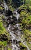 Panorama wysoka malownicza siklawa w bujny zieleni lasu krajobrazie zdjęcia stock