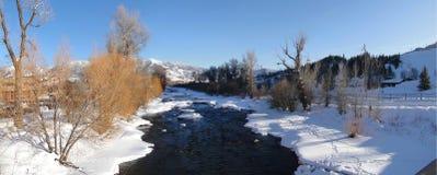 Panorama, Yampa-Fluss und Pappeln im Winter Lizenzfreie Stockbilder
