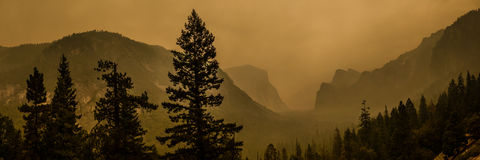 Panorama Yosemite Photographie stock libre de droits
