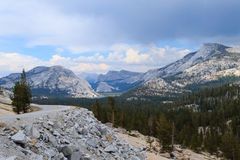Panorama from Yosemite National Park Stock Image