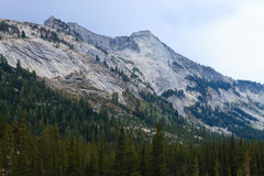 Panorama from Yosemite National Park Royalty Free Stock Images
