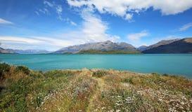 Panorama z kwiatami i Jeziornym Wakatipu Zdjęcie Stock