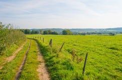 Panorama zielona łąka na wzgórzu w świetle słonecznym Zdjęcia Royalty Free