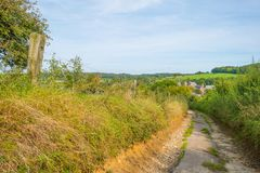 Panorama zielona łąka na wzgórzu w świetle słonecznym Obraz Stock