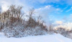 Panorama zima krajobraz Obrazy Royalty Free