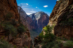 Panorama of Zion National Park Royalty Free Stock Image