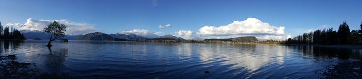 Panoramaansicht berühmten Wanaka-Baums stockbilder