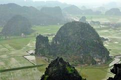 Panoramaansicht von Reisfeldern und von Kalksteinfelsen und von Fall M Stockbilder