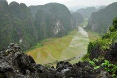 Panoramaansicht von Reisfeldern und von Kalksteinfelsen und von Fall M Lizenzfreies Stockfoto