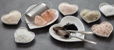 Panoramabanner van een verscheidenheid van culinaire zouten stock afbeelding