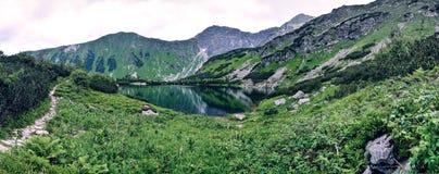 Panoramabild av den alpina sjön för Rohacske plesa i västra Tatras berg, Slovakien, Eastern Europe Royaltyfri Foto