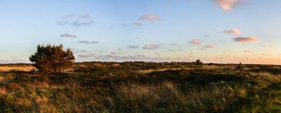 Panoramablick, auf einer Dünenlandschaft im Hinterland mit einer einfachen Straße zum Horizont entlang dem Sonnenuntergang in Dän stockfotografie